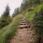 sentiero del legno